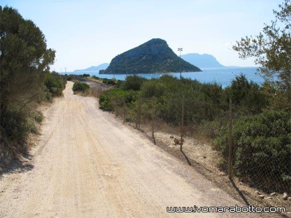Onde-Road-2014-25